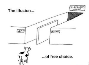 Democrazia-illusione-di-massa